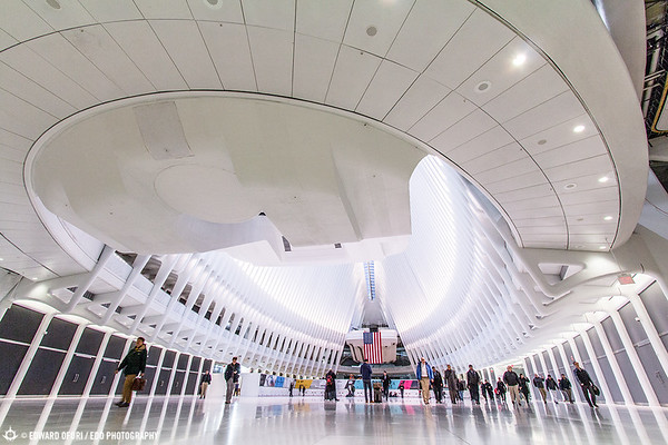 Gallery World Trade Center Transit Hub and Oculus by EDO Photography