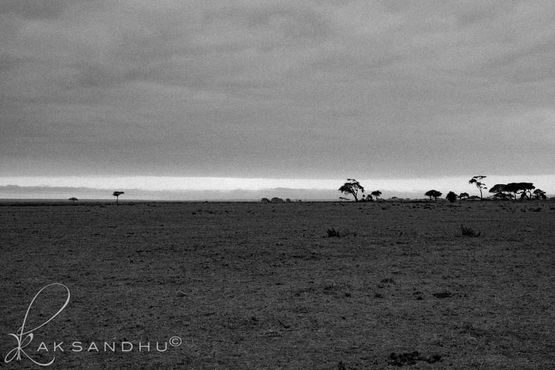 SunInAfrica-006.jpg