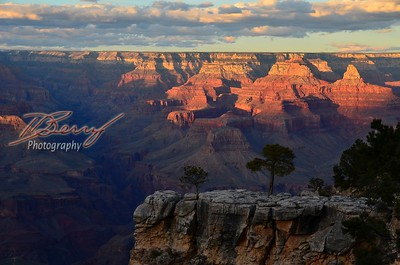 Grand Canyon Trip Spring 2019