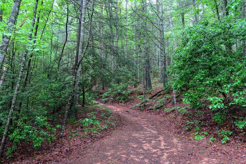 Sleepy Gap-Explorer Loop Trail Junction -- 2,380'
