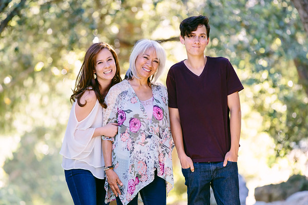 The Brake Family