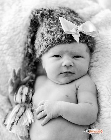 Abigail Newborn for posting