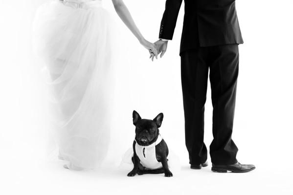 Shawn Pre-Wedding