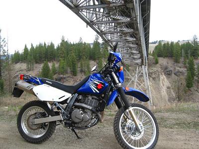 Suzuki DRs