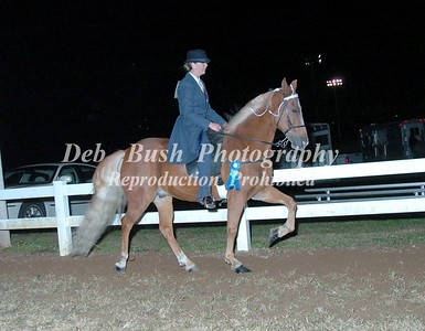 CLASS 31  LITE SHOD SPECIALTY CHAMPIONSHIP