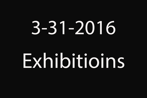 3-31-2016 TxLaBRA 'Exhibitions'