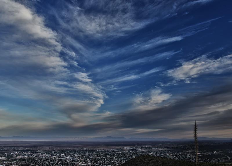 NEA_6392-7x5-Morning Light.jpg