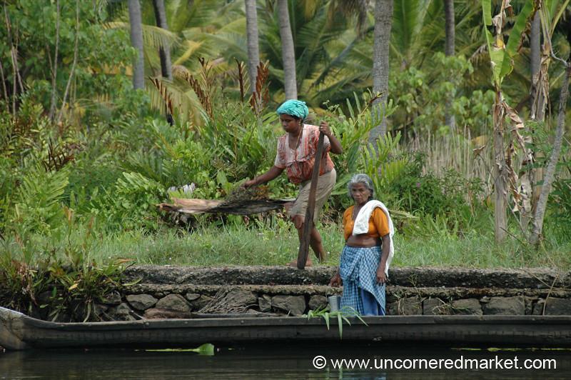 Working Together - Kerela Backwaters, India