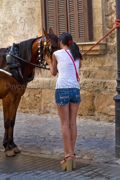 Mallorca1 7168.jpg