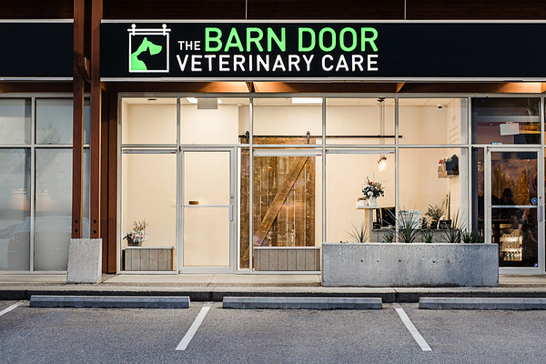 The Barn Door Veterinary care