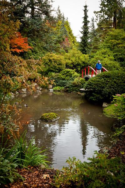 Kubota Garden - Renton, WA - October, 2012