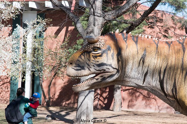 Denver Zoo Trip 2