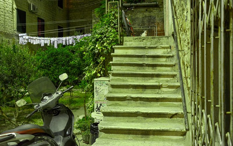 This scene from Split, Croatia is one of the most visually interesting in the series -- the laundry hanging to dry (why is every single piece white?), the scooter, graffiti, stairs, fence, stone walls, plants and the green cast over everything caused by the fluorescent lights. And then there is the cat staring right at Elliott!