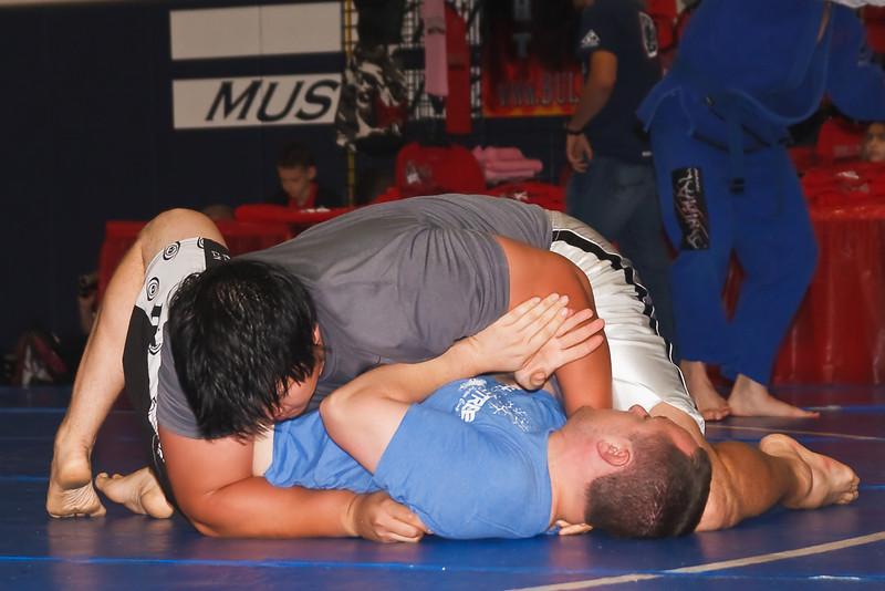 MMA_Houston_20090418_1003.jpg