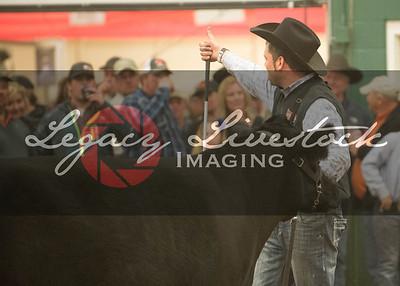 2015 Nebraska Cattleman's Classic
