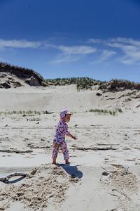 Delphine a la plage