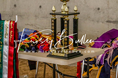 Northern NSW Welsh Show - Sunday