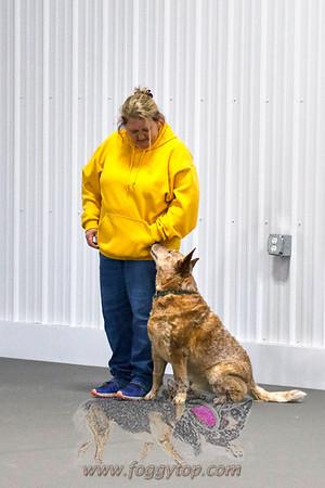 07 March 2020 -Let's Speak Dog - WRCL Trial