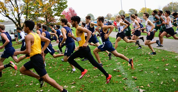 HS Sports - Cross Country Pre-Regional at Allen Park