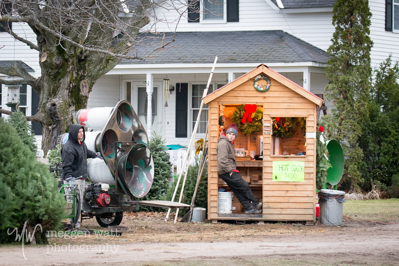 TLR-20181126-6217 Kolarik Christmas Tree Farm HQ