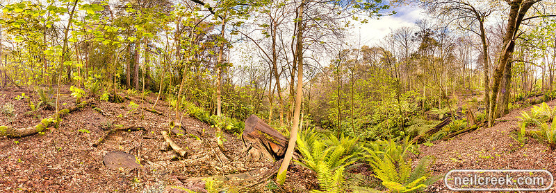 creek-130920-041-hdr-pano-sml.jpg