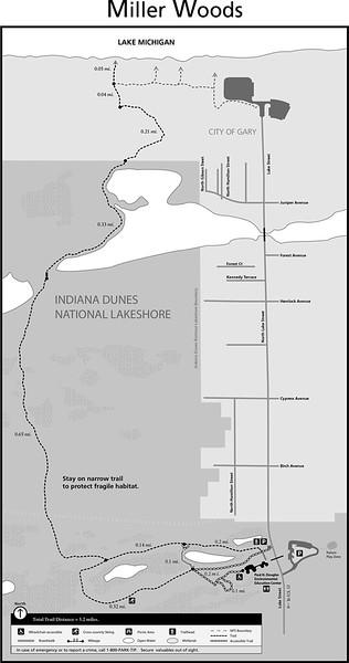 Indiana Dunes National Park (Miller Woods Trails)