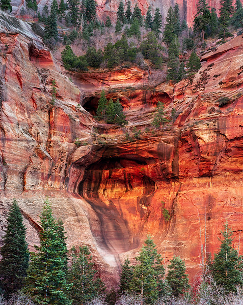 Canyon Reflections.jpg