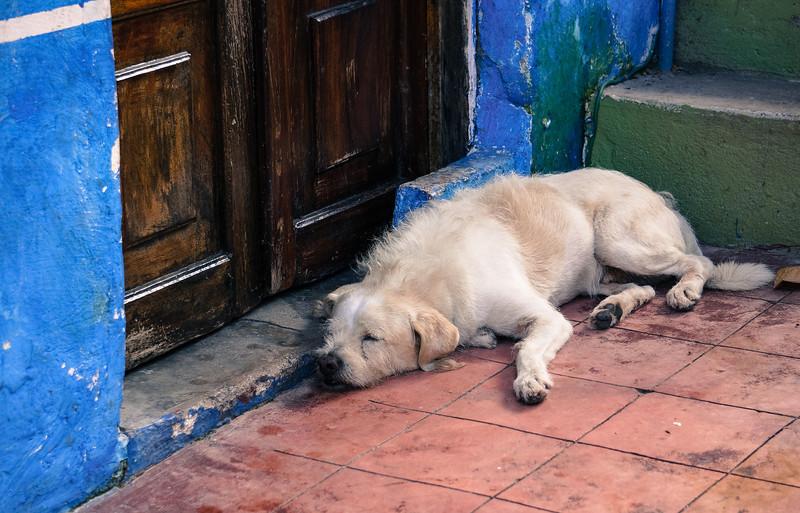 PV.Mexico-174.jpg
