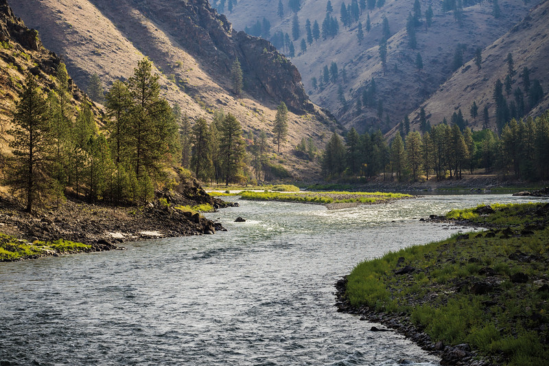 Salmon River Morning Light.jpg