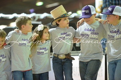 2017 Williamson County Youth Expo