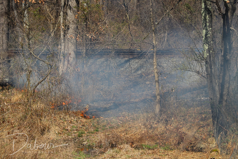Brush fire along rail road tracks