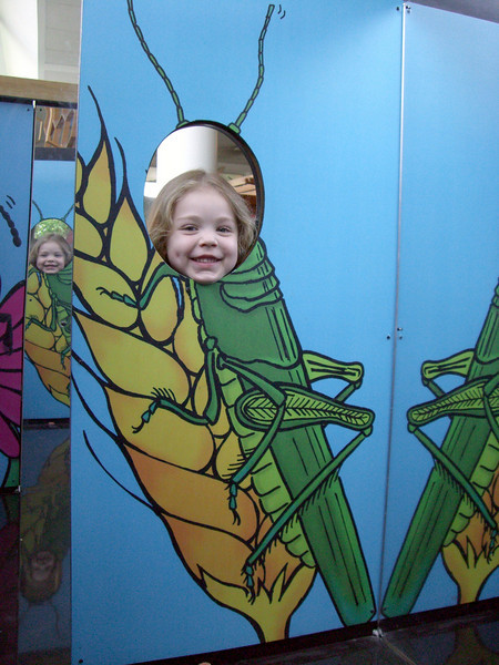 Kimber the grasshopper. Visiting the Pacific Science Center.