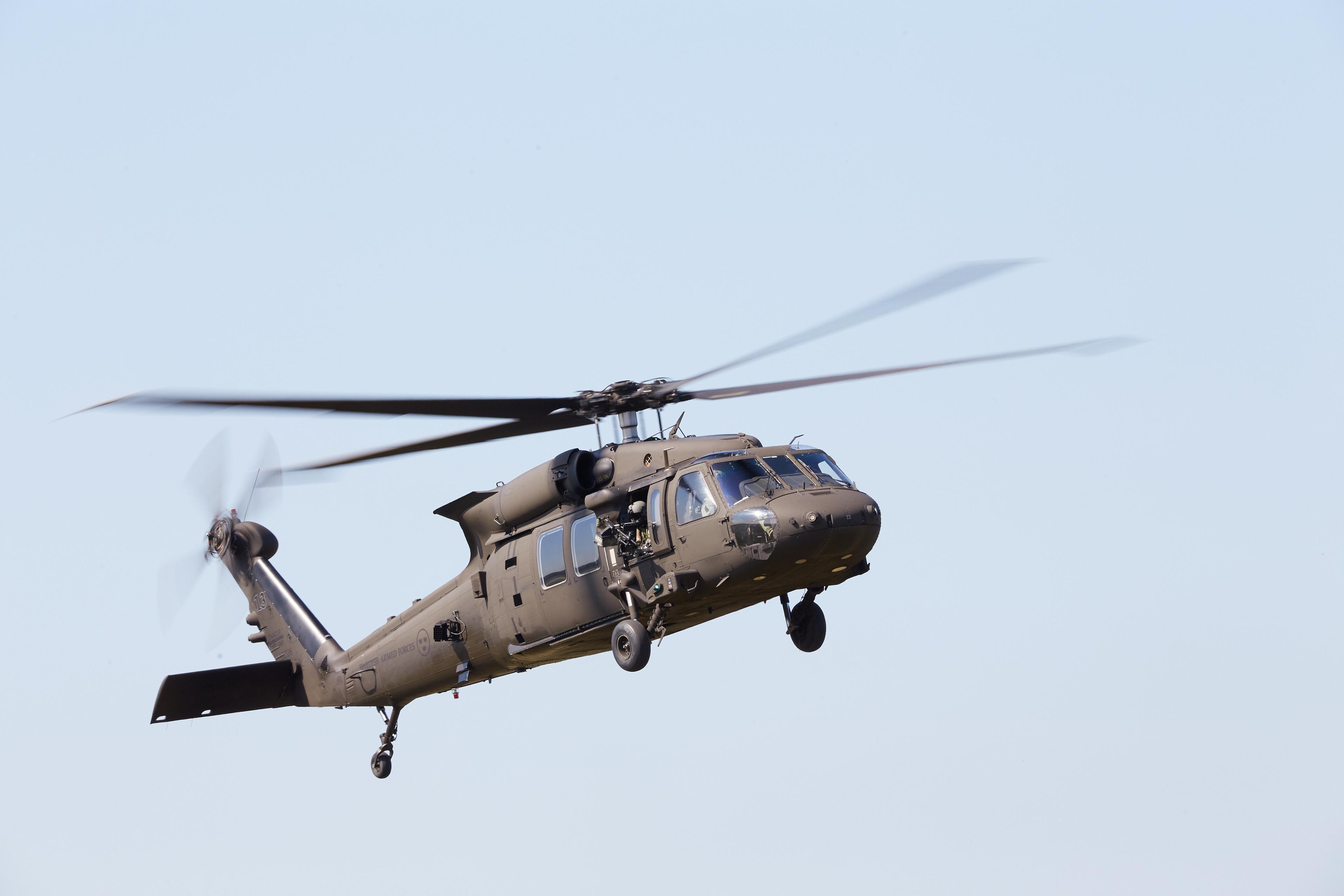 Försvarsmaktens flygdag 2019