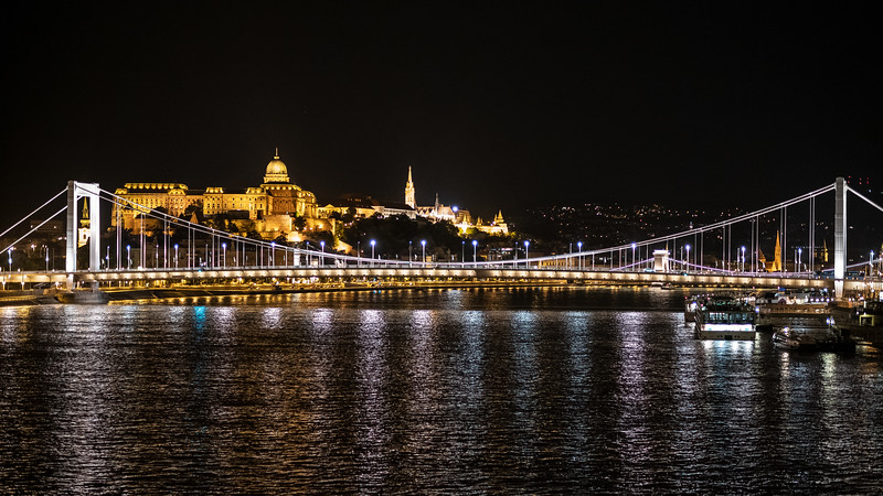 Elizabeth Bridge & Buda Castle night.jpg