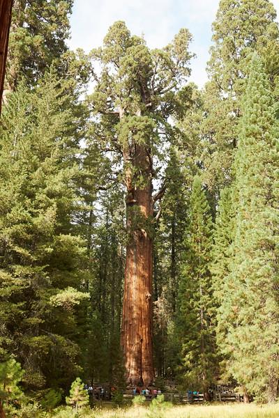 Yosemite-21Sep16-Img-1672_Blue.jpg