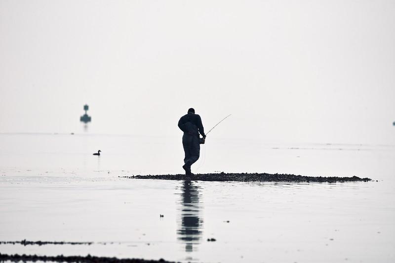 Fishin' Fog. 6:6:20.jpg