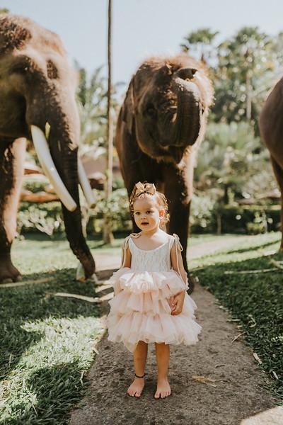 VTV_family_photoshoot_elephants_Bali_ (36).jpg