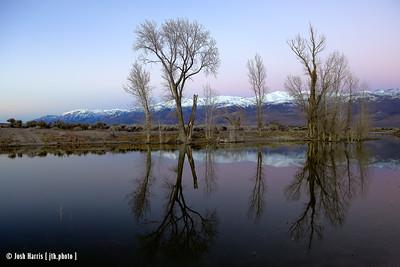 eastern sierra / trona pinnacles — january 2017