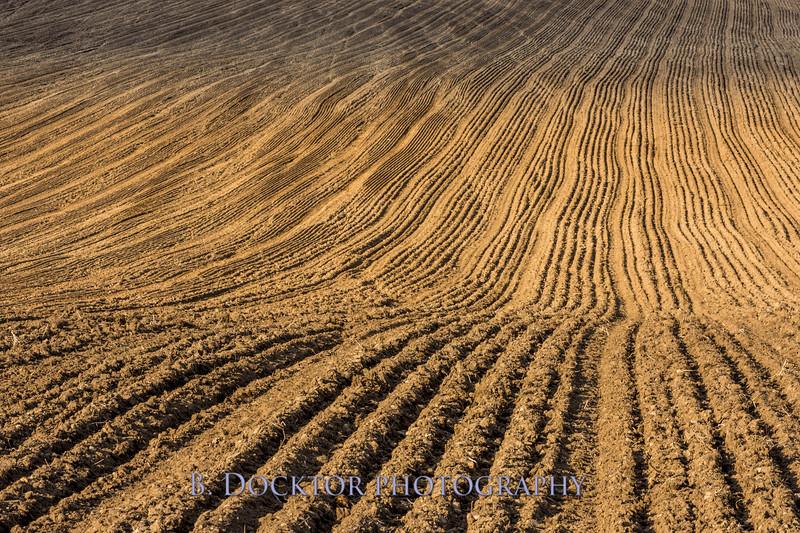 Hudson Valley Hops & Grains-24.jpg