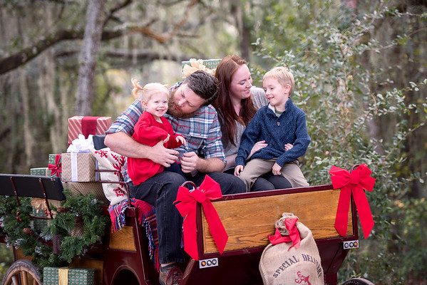 Clydesdales Nov 2018 Powell Family