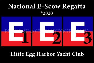 NATIONAL E-SCOW *2020