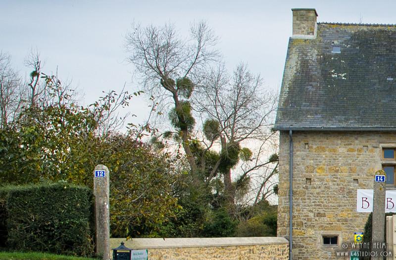 Outside Sainte-Mere-Eglise   Photography by Wayne Heim