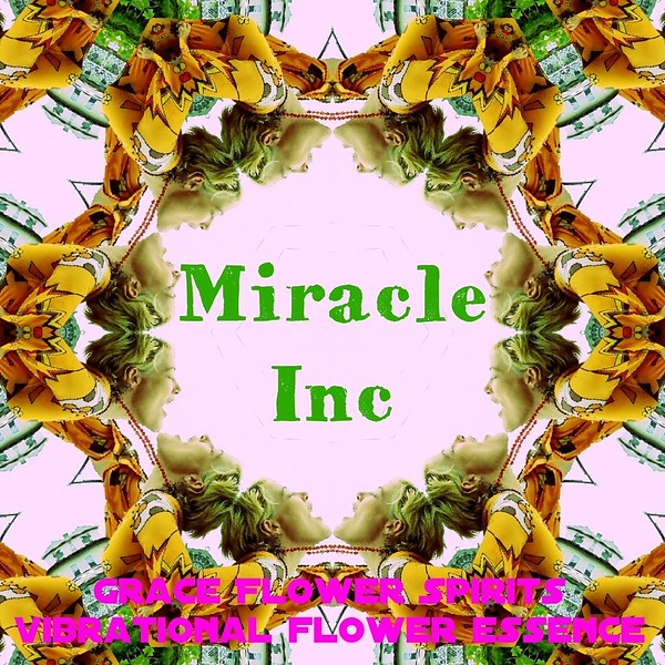 image3A64335_mirror14.jpg