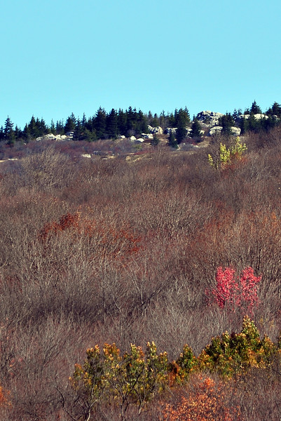 Timberline Views - WV