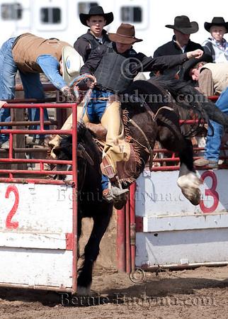 Saddle Bronc  BCHSR DMC