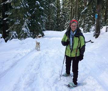 Snowshoe Hike - Gold Lake Oregon - 2019