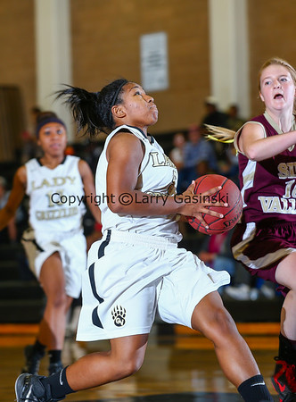 Simi Valley at Golden Valley - 1/7/2015