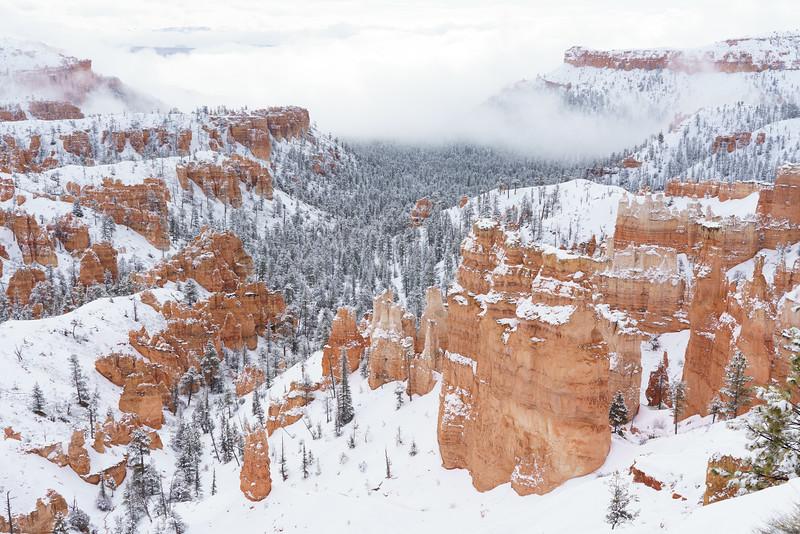 200319 - Bryce Canyon - 00386.jpg