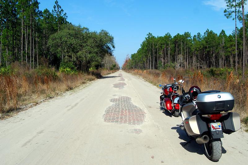 4 January 19 2013 Along Old Dixie Highway Brick Road.JPG