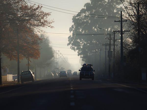 20110609 0824 Greytown mist _MG_8685a.jpg